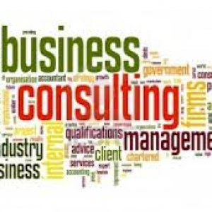Business Consulting at dnp